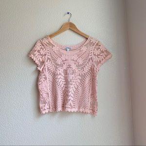 Express Pink Sheer Lace Top